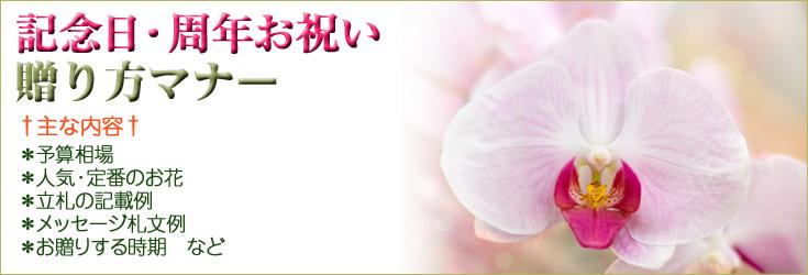 記念日・周年祝いの贈り方のマナー 胡蝶蘭、フラワー、観葉植物