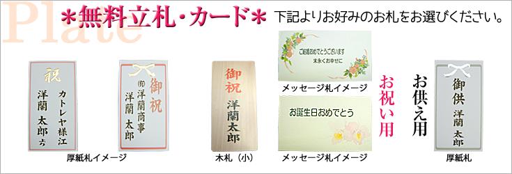 立札例 木札 厚紙札 メッセージカー札 森田洋蘭園|フラワーギフト通販ミーム