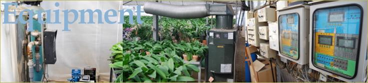 大輪胡蝶蘭 おぎの蘭園 コンピュータ制御による室内環境管理